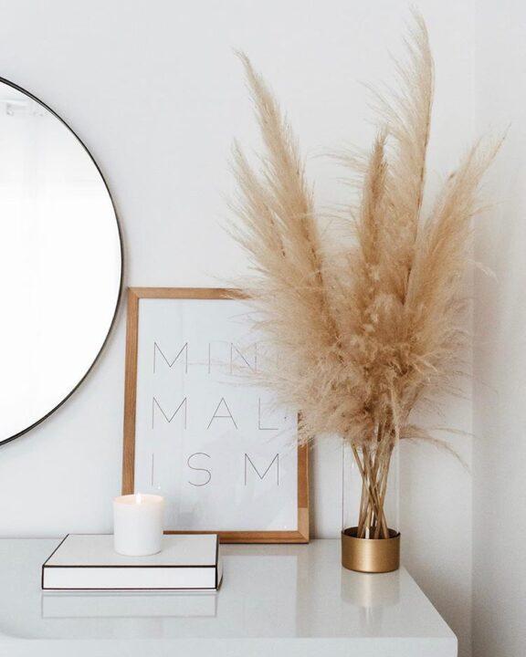 Pampas trava je savršena dekoracija za Vaš dom